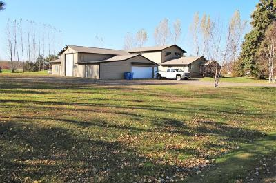 Pine City MN Single Family Home For Sale: $299,900