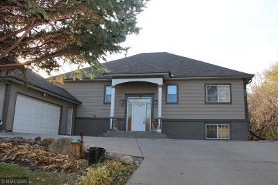 Saint Paul Single Family Home For Sale: 1299 Desoto Street