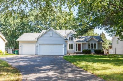 Blaine Single Family Home For Sale: 9423 Jamestown Street NE