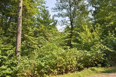 Brainerd Residential Lots & Land For Sale: Tract B & C Shady Hills Trail