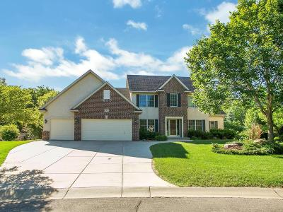 Rosemount Single Family Home For Sale: 13402 Cormack Circle