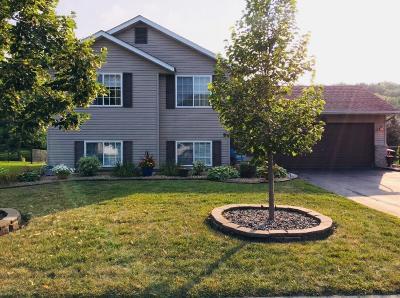 Farmington Single Family Home For Sale: 4882 190th Street W