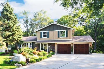 Burnsville Single Family Home For Sale: 13231 Fremont Avenue S