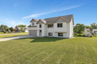 Saint Joseph Single Family Home For Sale: 704 2nd Avenue SW