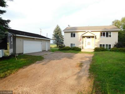 East Bethel Single Family Home For Sale: 23757 Highway 65 NE