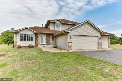 North Branch Single Family Home For Sale: 4406 366th Court