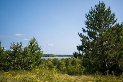 Sauk Centre MN Residential Lots & Land For Sale: $74,900