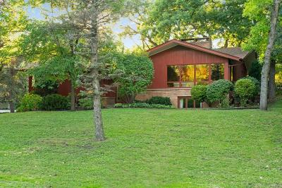 Minneapolis Single Family Home For Sale: 2044 Cedar Lake Parkway