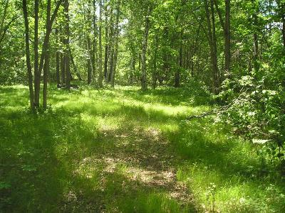 Crosslake Residential Lots & Land For Sale: Xxx Bunkhouse Road