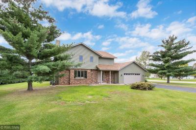 Saint Cloud MN Single Family Home For Sale: $289,900