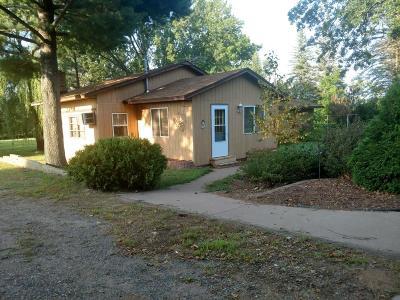 North Branch Single Family Home For Sale: 38929 Lantz Avenue