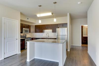 Minneapolis Rental For Rent: 1215 Marshall Street #316