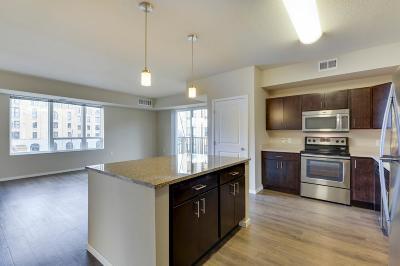 Minneapolis Rental For Rent: 1215 Marshall Street #112