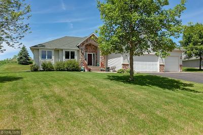 Saint Cloud MN Single Family Home For Sale: $264,900