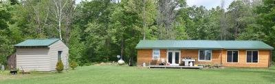 Motley Single Family Home For Sale: 8377 Arrow Drive SW