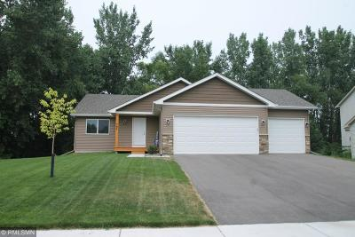 Single Family Home For Sale: 762 Preserve Boulevard