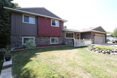 Andover Single Family Home For Sale: 4162 151st Avenue NW