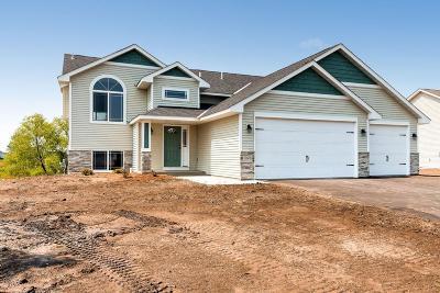 Anoka County, Carver County, Chisago County, Dakota County, Hennepin County, Ramsey County, Sherburne County, Washington County, Wright County Single Family Home For Sale: 20478 Gordon