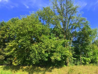 Eden Prairie, Chanhassen, Chaska, Carver Single Family Home For Sale: 801 Cascade Drive