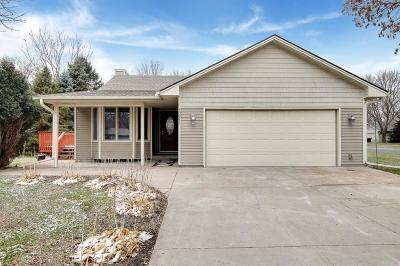 Blaine Single Family Home For Sale: 10842 Stutz Street NE