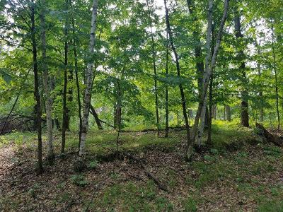 Breezy Point Residential Lots & Land For Sale: Tbd N Lakeview Drive