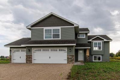 New Richmond Single Family Home For Sale: 1671 Squirrel Way