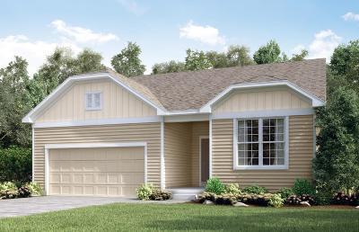 Blaine Single Family Home For Sale: 3750 112th Circle NE