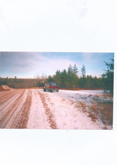 Buyck MN Residential Lots & Land For Sale: $139,900