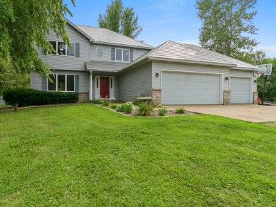 Prescott Single Family Home For Sale: W12987 648th Avenue
