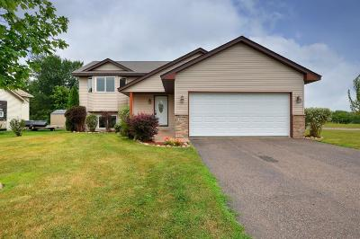 Braham Single Family Home For Sale: 1010 Palomino Street