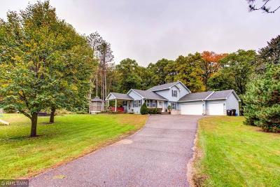 East Bethel Single Family Home For Sale: 20134 Wild Rice Drive NE