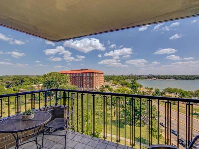 Minneapolis Condo/Townhouse For Sale: 2950 Dean Parkway #1003