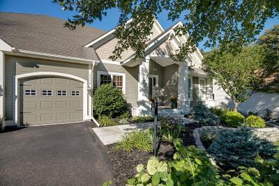Cottage Grove Single Family Home Contingent: 7514 Aspen Cove S