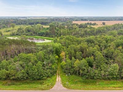Isanti Single Family Home For Sale: 27301 Highway 65 NE