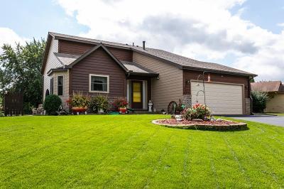 Oakdale Single Family Home Contingent: 1387 Granite Lane N