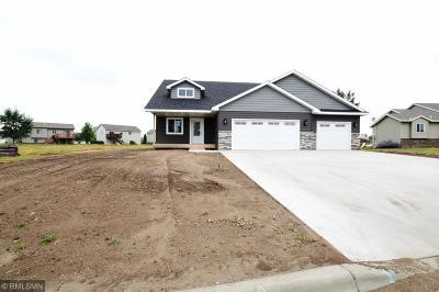 Saint Joseph Single Family Home For Sale: 429 7th Avenue SE