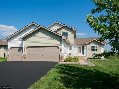 Otsego MN Single Family Home Pending: $289,900