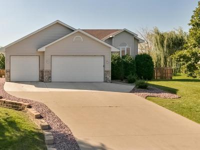 Buffalo Single Family Home For Sale: 810 Vendell Street