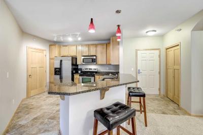 Burnsville Condo/Townhouse For Sale: 12501 Nicollet Avenue #309