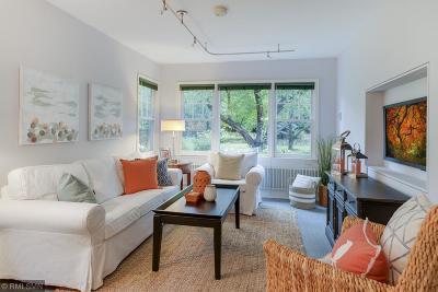 Edina Single Family Home For Sale: 4384 Thielen Avenue
