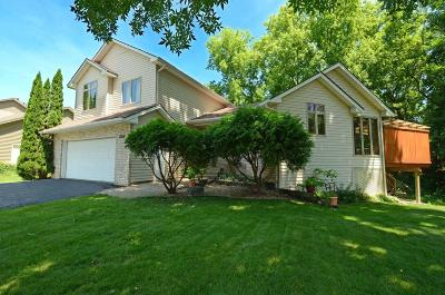 Chanhassen Single Family Home For Sale: 7004 Sandy Hook Circle