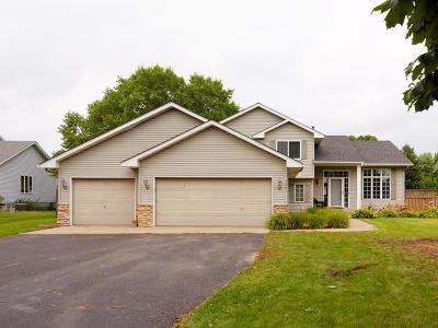 Farmington Single Family Home For Sale: 5441 193rd Street W