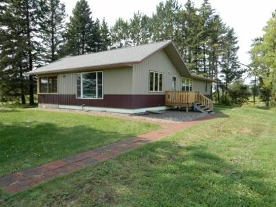 Sturgeon Lake Single Family Home For Sale: 43426 Birchview Road