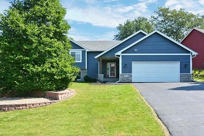 Eagan Single Family Home For Sale: 1619 Ashbury Place