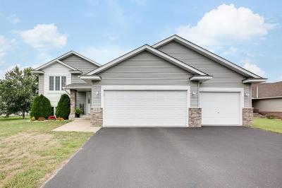East Bethel Single Family Home For Sale: 24185 Pierce Street NE