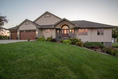 Carver County Single Family Home For Sale: 13948 County Road 32