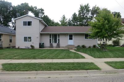 Single Family Home For Sale: 604 E Lake Street