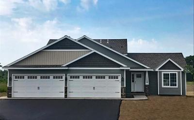 Sherburne County Single Family Home For Sale: 32169 97th Street NW