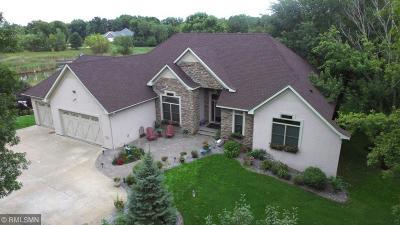 Ham Lake Single Family Home For Sale: 13436 Dunkirk Street NE