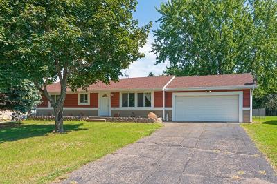 Coon Rapids Single Family Home For Sale: 11841 Narcissus Street NW